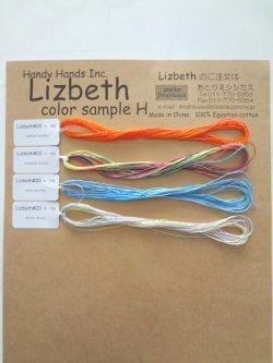 画像1: Lizbethミックス(旧Ver.追加用)実物見本シート H