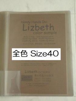 画像1: Lizbeth フルセット206色 実物見本帳  #40